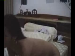 援交妹给我口时,没控制住射她嘴里了,结果直接睡觉去了,真想干死她!