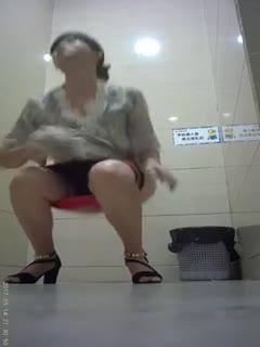 【厕所偷拍】商场厕拍妹子下面的毛真多